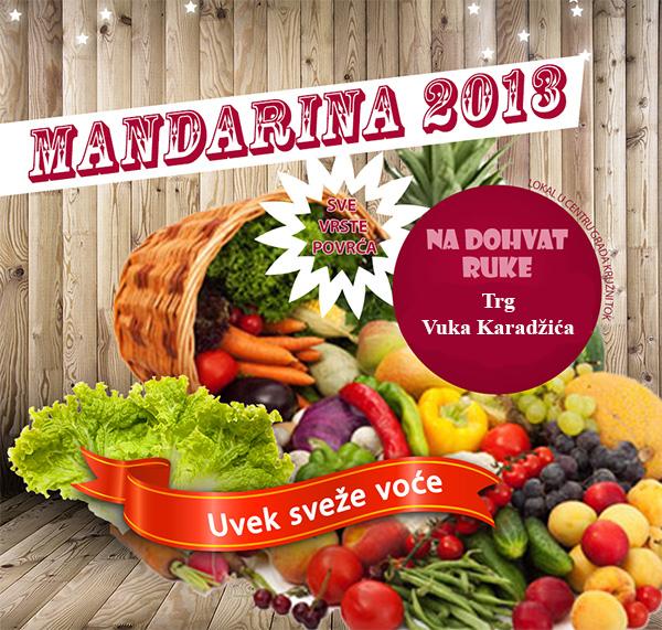 mandarina-2013-loznica-baner